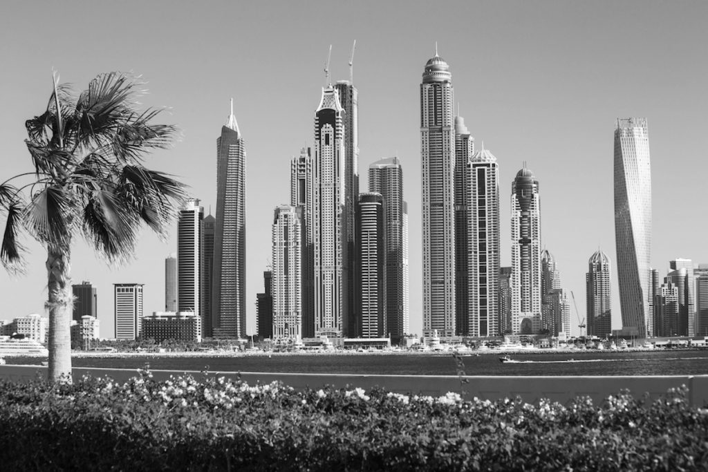 Dubai skyscrapers with palm tree