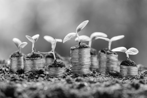 Piles of coins with seedlings growing out of the top of them